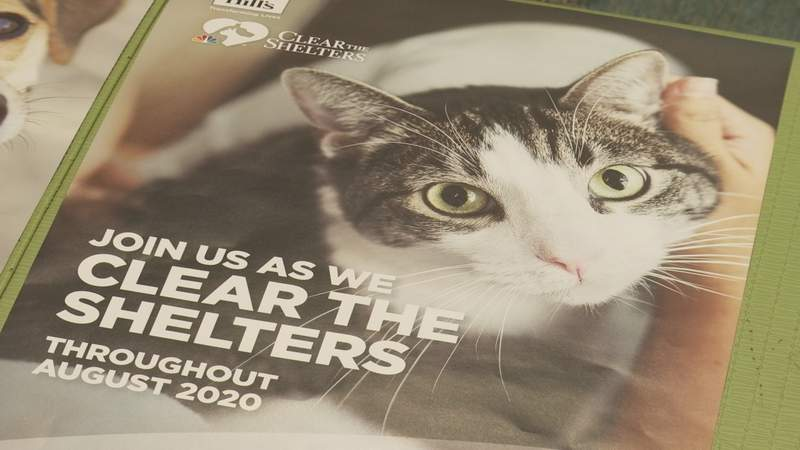 Our annual clear the shelter event is back but it'll be virtual this year because of the pandemic.  The Lynchburg Humane Society will be the first shelter we feature next week.