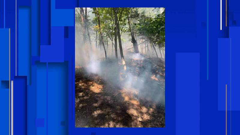 On Saturday, the Roanoke County Fire & Rescue Department responded to a 5-acre brush fire that they think was human-caused.