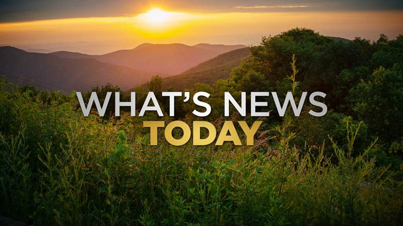 What's News Today
