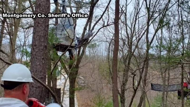 Law enforcement working to remove tree-sitters