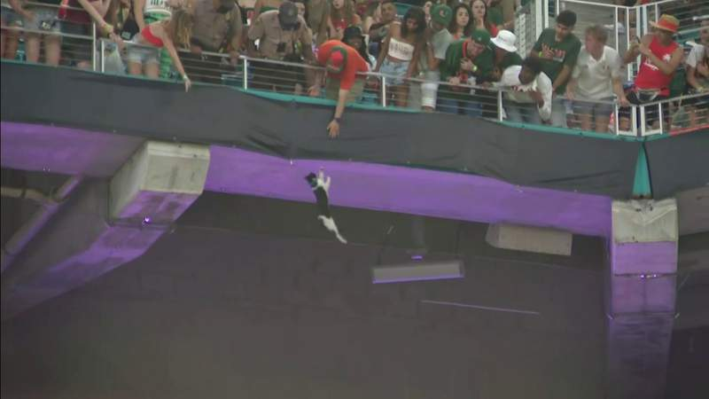 Fans who helped save falling cat bring American flag to every Canes game