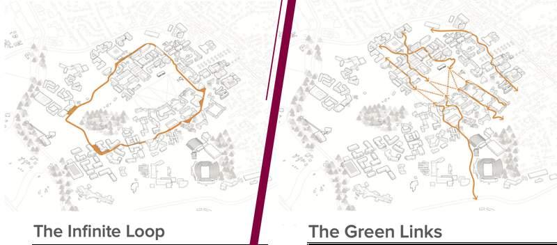The Infinite Loop and Green Links