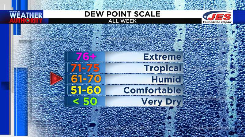 Dew point scale - all week