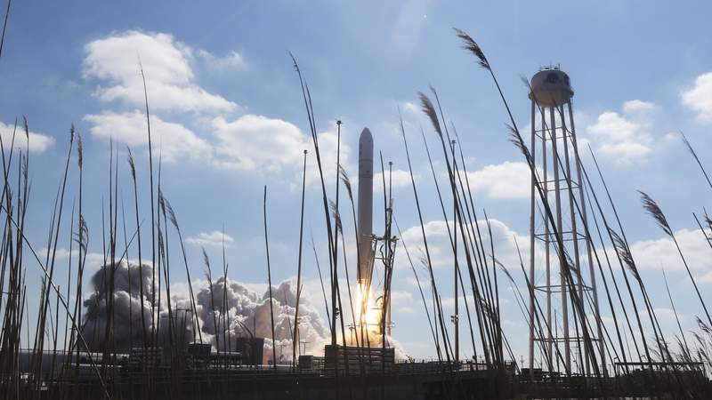 A goose is startled as Northup Grumman's Antares rocket lifts off the launch pad at NASA's Wallops Island flight facility in Wallops Island, Va., Saturday, Feb. 20, 2021. The rocket is delivering cargo to the International Space Station. (AP Photo/Steve Helber)