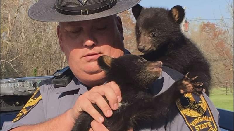(Courtesy: Virginia Fraternal Order of Police Associates)