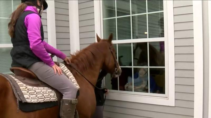 Horses visit Roanoke nursing home