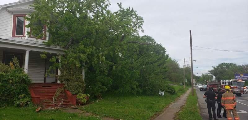 Fallen tree causes power line to block off road in Northwest Roanoke