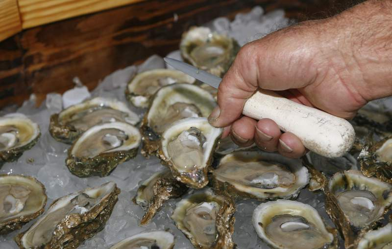 FILE- In this Aug. 13, 2013, file photo, oysters are displayed in Apalachicola, Fla. The Supreme Court has ruled unanimously for Georgia in its long-running dispute with Florida over water. The court on Thursday, April 1, 2021, rejected Floridas claim that Georgia uses too much of the water that flows from the Atlanta suburbs to the Gulf of Mexico.(AP Photo/Phil Sears, File)