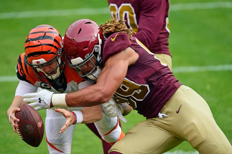 LANDOVER, MARYLAND - NOVEMBER 22: Chase Young #99 of the Washington Football Team forces a fumble by Joe Burrow #9 of the Cincinnati Bengals at FedExField on November 22, 2020 in Landover, Maryland. (Photo by Patrick McDermott/Getty Images)
