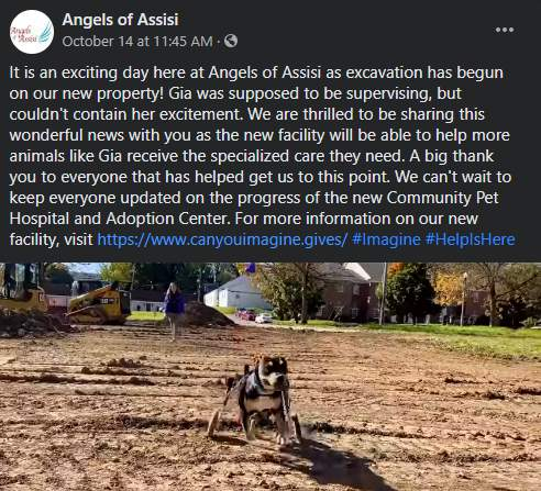 Angels of Assisi began excavation work on its new pet hospital and adoption center.