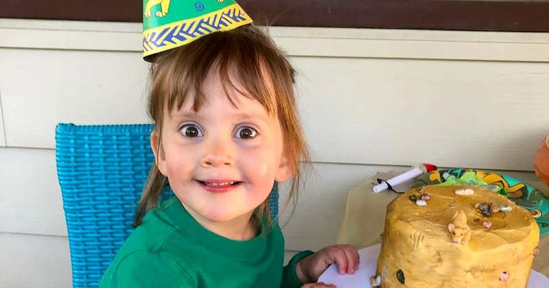Girl, 3, requests morbid 'Lion King' scene on birthday cake so she can have it all to herself (Courtesy: NBC News)