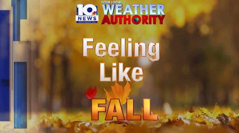 Feeling like fall
